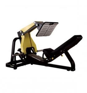 45 Degree  Leg Press SH50