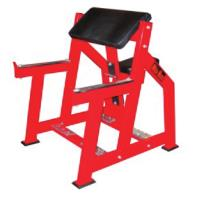 Seated Arm Curl 6019